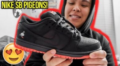 NIKE SB 'BLACK PIGEON' REVIEW!!! (ARE DUNKS COMING BACK?!)